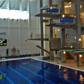 Plymouth Diving in the medals on opening day of Luton Challenge