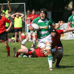 Albion will consider making their players available for countyrugby