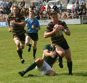 Summer signing Shepherd will miss Plymouth Albion's pre-seasonmatches