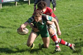 RUGBY REPORTS: Ivybridge show strength in depth to claim bonus-point win overLydney