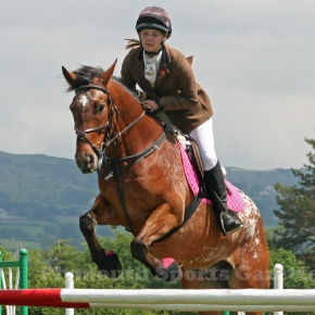 GALLERY: Pictures from West Devon Riding Club's Spring Show at Roborough